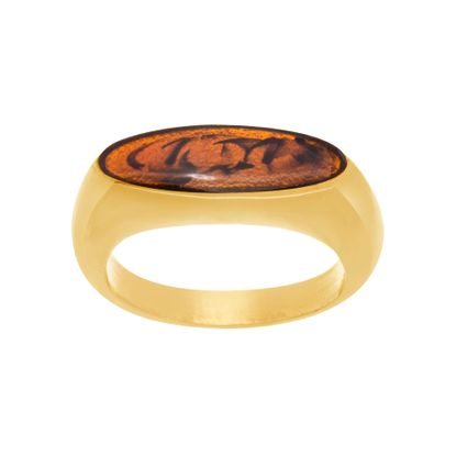 Imagen de Gold-Tone Stainless Steel  Polished Tortoise Enamel Flat Bar Ring Size 9