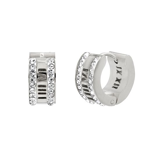 Imagen de Silver-Tone Stainless Steel Cubic Zirconia Border Roman Numeral Earrings
