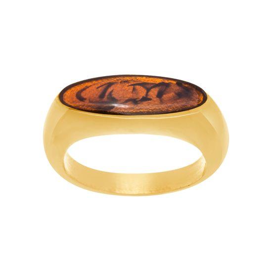 Imagen de Gold-Tone Stainless Steel  Polished Tortoise Enamel Flat Bar Ring Size 9